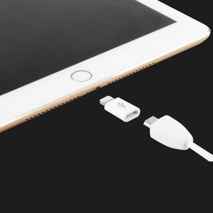 Оригінальний Apple Lightning to Micro USB (MD820)